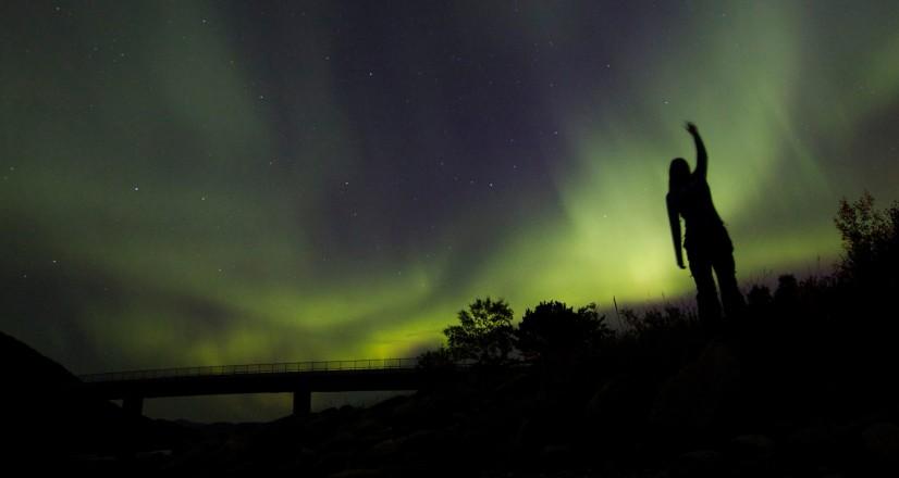 Nordlys over Saltstraumen. Foto: Synne M. S. Tømmerberg